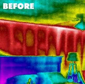 summer-before-thermal-image